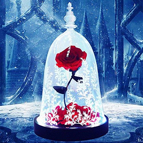 Only rose Rose éternelle,Dome Verre Base en Bois Massif Lumières LED colorées Romantique Fleur Saint-Valentin Noël Anniversaire (Boîte Cadeau de Rouge 16x28cm(6x11inch)