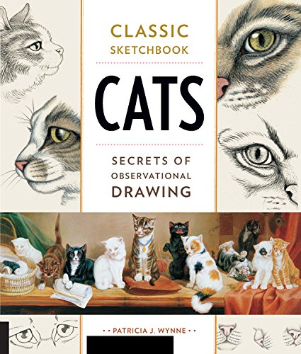 Cats: Secrets of Observational Drawing