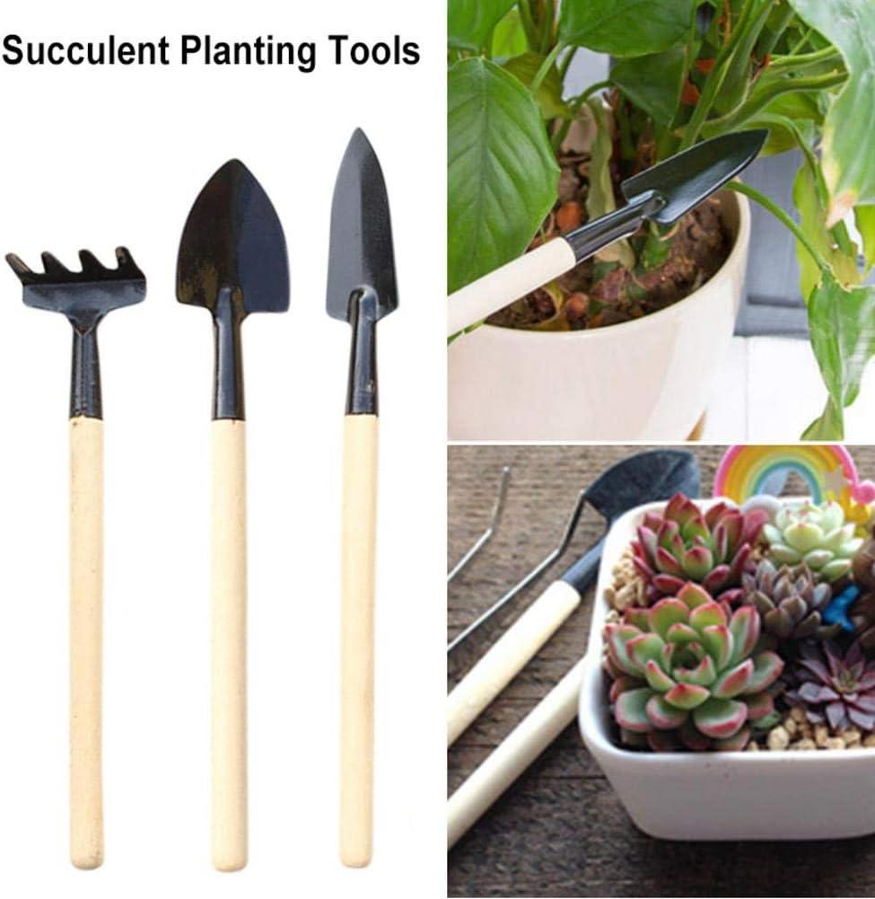 DaJun 3PCS Financial sales sale Set OFFicial shop Succulent Planting Tools Spade Rake Mini Wooden -