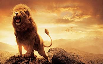 60x80 Blanket Comfort Warmth Soft Plush Throw for Couch Fashion Animal narnia lion aslan