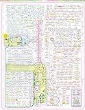 The Museum Outlet Diagramme des Stoffwechsels, Papier,