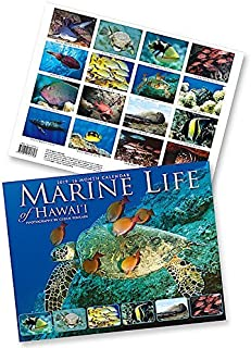 Marine Life of Hawaii, 2019 16 Month Trade Calendar, November 2018 - February 2020
