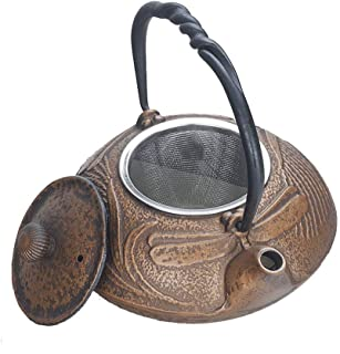 Mini Cast Iron Teapot Household Japanese Style Iron Kettle Southern Ironware Small Bottle Golden Dragonfly Pattern 0.5L