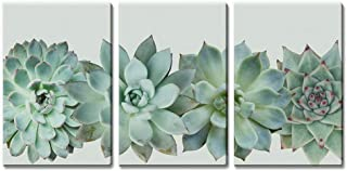 Canvas Wall Art - Giclee Print Home Decoration (36