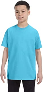 Hanes Cotton T-Shirt (54500)