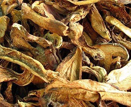 24 Ounce (680 grams) Boletus luteus mushroom dried Grade A yello