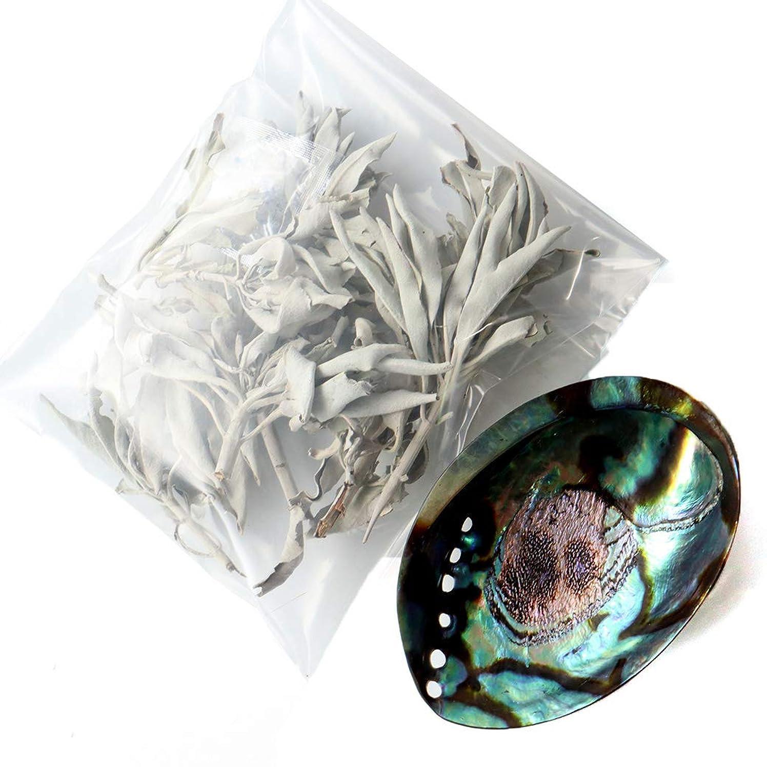 不十分な煙太いホワイトセージ 枝付き 30g前後 アバロンシェル 浄化皿 セット