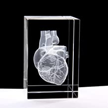 3D Human Heart Anatomical Model Paperweight(Laser Etched) in Crystal Glass Cube Science Gift (No Included LED Base)(3.1x2x2 inch)