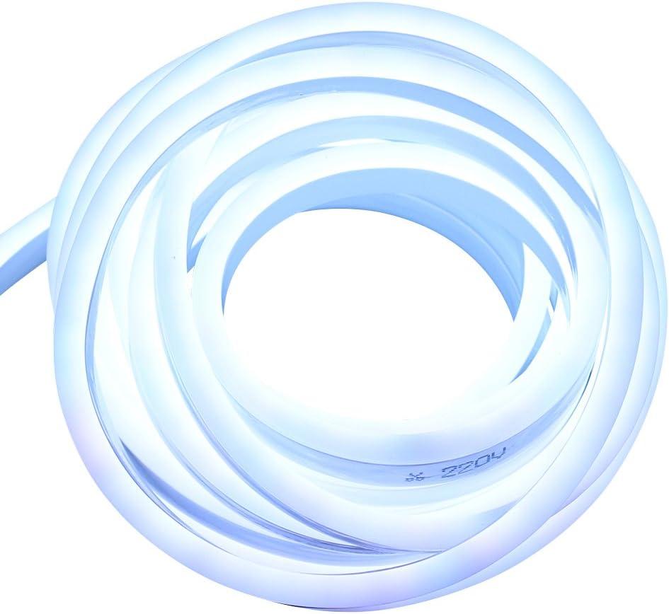 Max 54% OFF Xunata 13.2ft LED Rope Neon Light Flexible P 110V US Virginia Beach Mall Waterproof