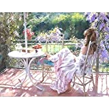 FBDBGRF Pintar por Número Bellezas del Jardín para Adultos Y Niños DIY Kit De Regalo De Pintura Al Óleo con Juego De Pintura Digital para Decoración del Hogar Lienzos para Pintar