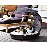 The Refined Canine Outdoor Dog Chaise Bed w/Shade Hood, Waterproof Poly Rattan Lounger with Washable Cushion