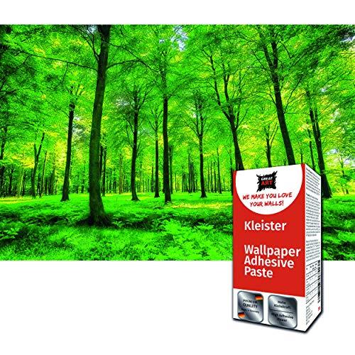 GREAT ART Foto Mural Bosque Verde 336 x 238 cm - Papel Pintado 8 Piezas incluye Pasta para pegar