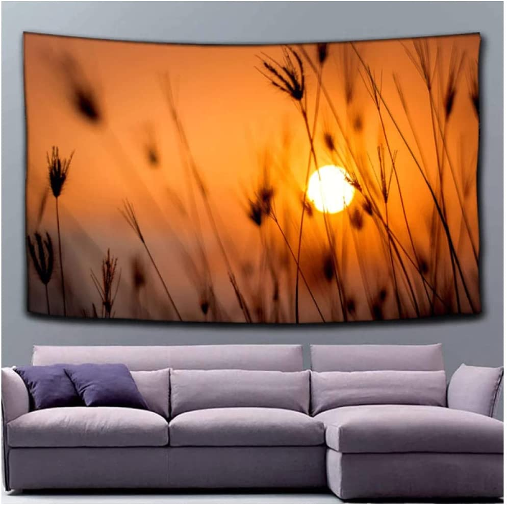 Tapestry by BD-Boombdl Sunset Scenery Decoration Wall Bombing new work Gorgeous Reed Hangi