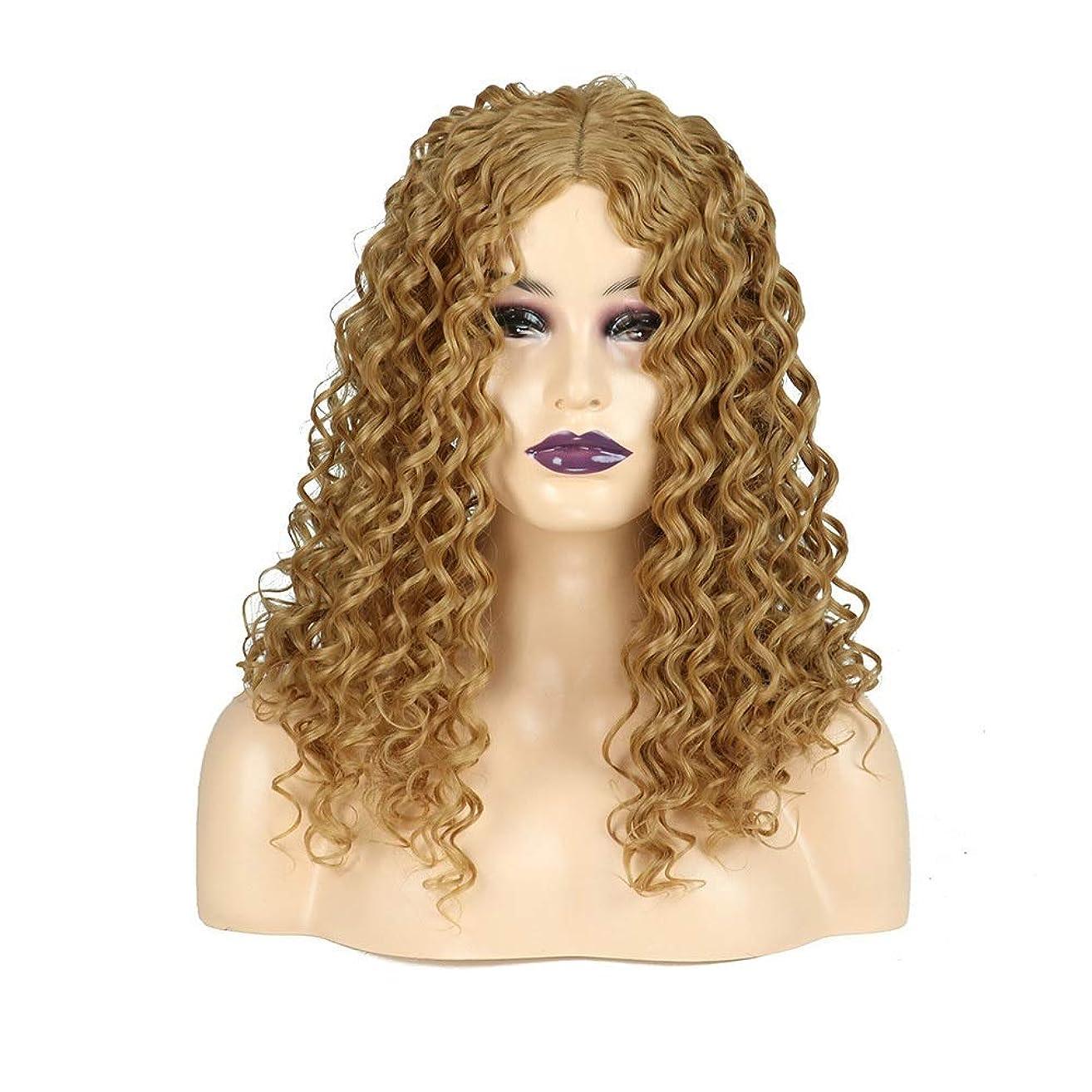 恥ずかしい爪間違っているBOBIDYEE ブロンドの長い巻き毛のかつらアフリカの小さな波ヒートセーフティ人工毛女性の毎日のドレスパーティーのかつら (色 : Blonde)