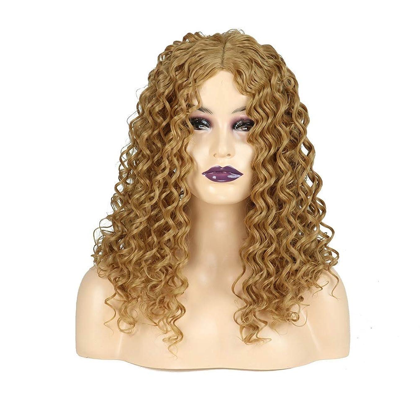 その後通知する知恵HOHYLLYA ブロンドの長い巻き毛のかつらアフリカの小さな波ヒートセーフティ人工毛女性の毎日のドレスパーティーのかつら (色 : Blonde)