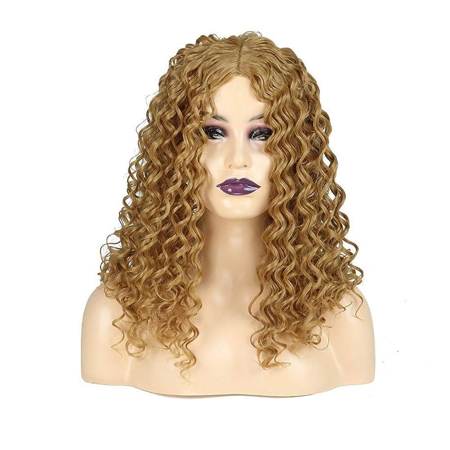 早めるトリクル蛾HOHYLLYA ブロンドの長い巻き毛のかつらアフリカの小さな波ヒートセーフティ人工毛女性の毎日のドレスパーティーのかつら (色 : Blonde)