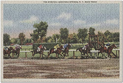 Saratoga Springs NY   Escena de hipódromo 6518 (rompecabezas de 1000 piezas para adultos)
