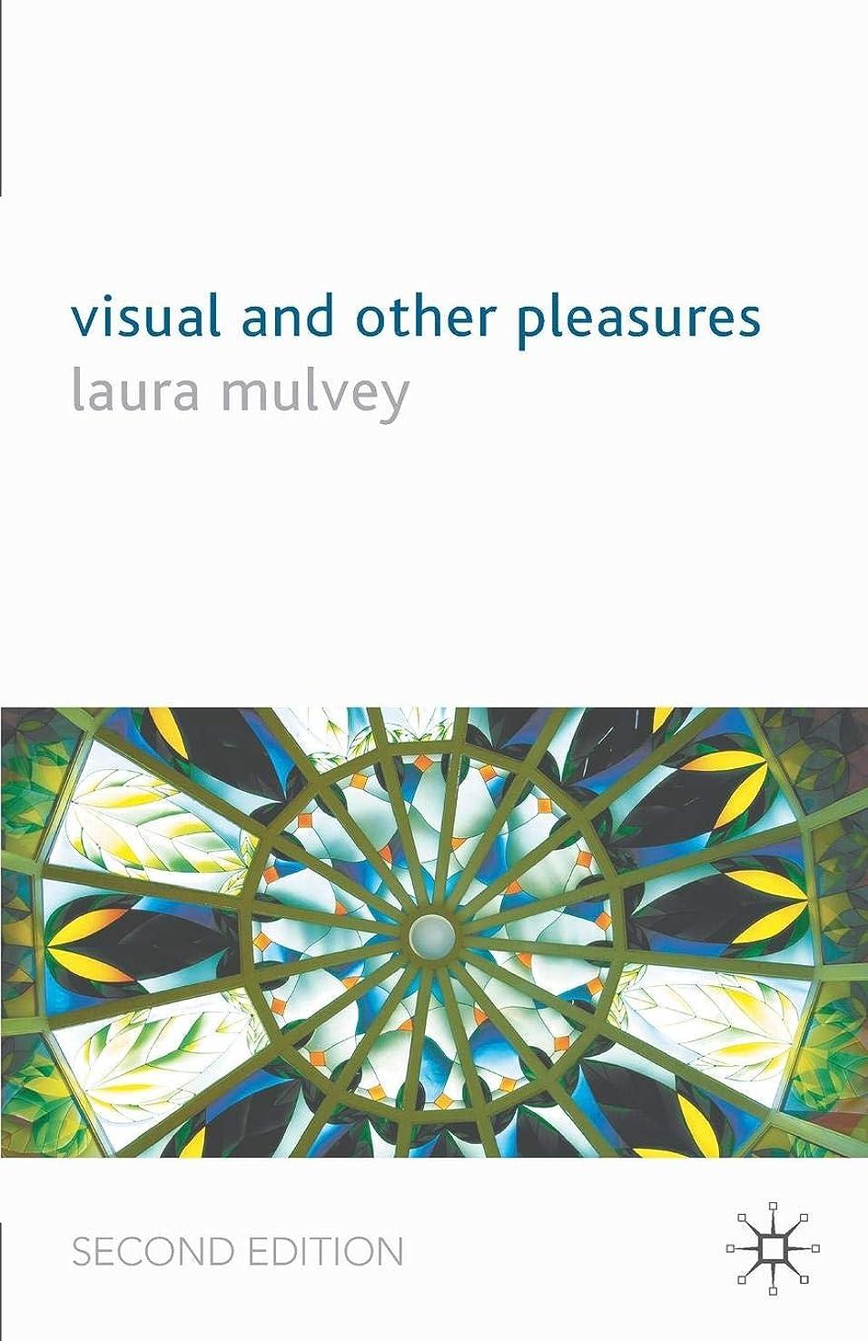砂利抗生物質ひどいVisual and Other Pleasures (Language, Discourse, Society)