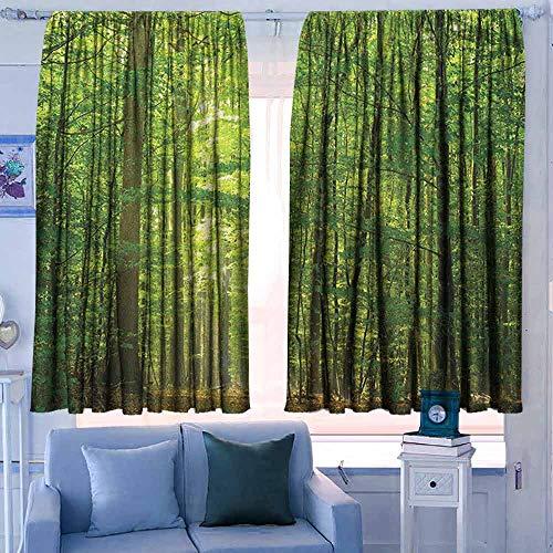 slaapkamer gordijnen Isolerende kamer verduistering Drapes Houten Lodge Stijl Teak Hardhout Muur Planken Afbeelding Print Boerderij Vintage Grunge Ontwerp Artsy Bruin