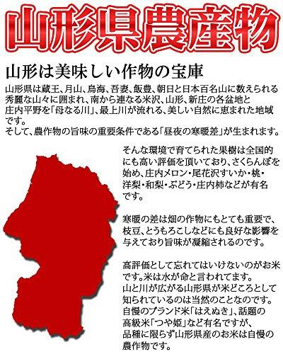 『山形県産 ひとめぼれ 30kg 紙袋 令和元年度産 (7分づき 9.3kg×3袋)』の3枚目の画像