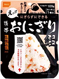 尾西食品 携帯おにぎり 鮭 [長期保存対応] 42g×10個