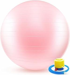 バランスボール 65cm ポンプ付き 破裂防止機能付き ヨガボール エクササイズボール アンチバースト( ミルキー ピンク )