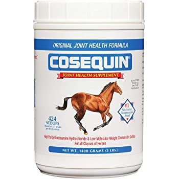 Equus Health MSM 500g