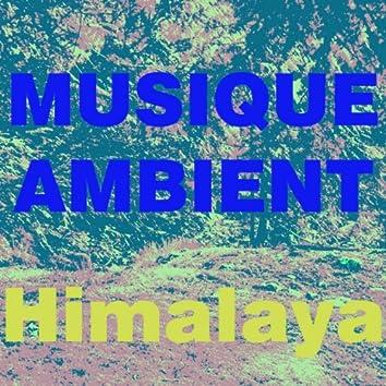 Musique Ambient