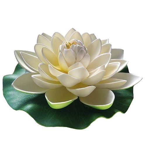Lotus Flower Amazoncom