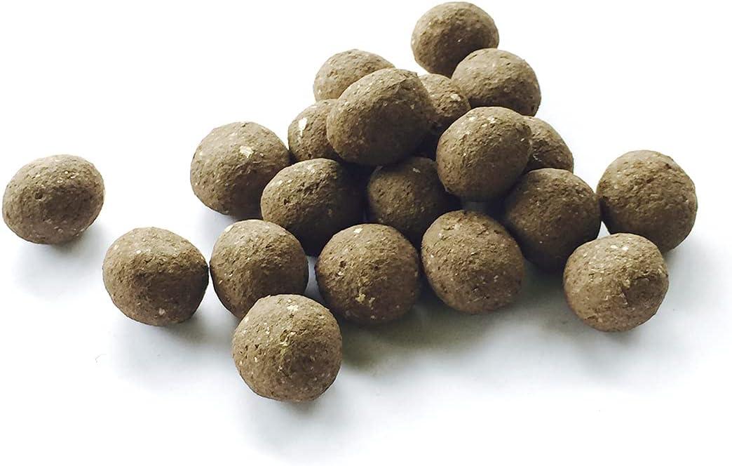 Seedbombs - Semillas de semillas revestidas con 36 tipos diferentes de flores y nutrientes valiosos de Greenedge Garden (12 bolas)
