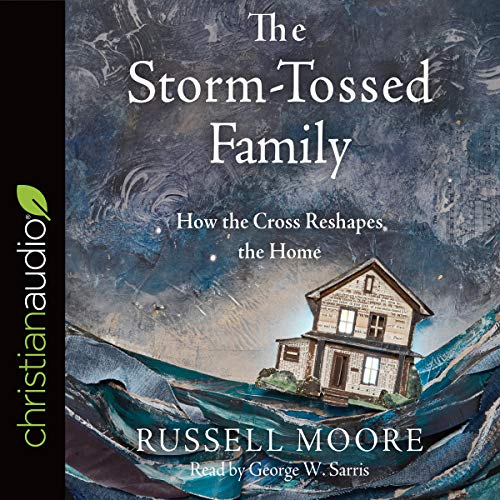 The Storm-Tossed Family audiobook cover art