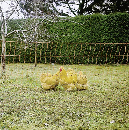Kerbl pollame Netto Singolo Prong Electrifiable, 50m/112cm, Arancione