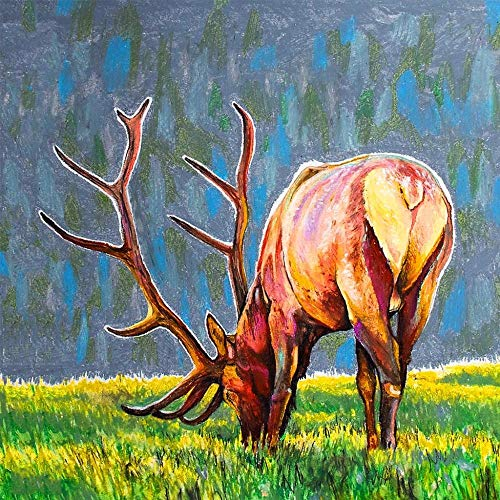 5D DIY Diamond Painting Kit Full Drill Diamond Painting Sets for Adult or Kid Abstract Colorful Deer & Giraffe & Tiger & Wolf & Bear & Beast 16X20 INCH (40X50CM) Diamond Embroidery