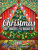 100 Christmas: A Christmas Coloring Book for Adults with Santas, Reindeer, Ornaments, Wreaths, Gifts, and More! (Christmas Coloring Books)