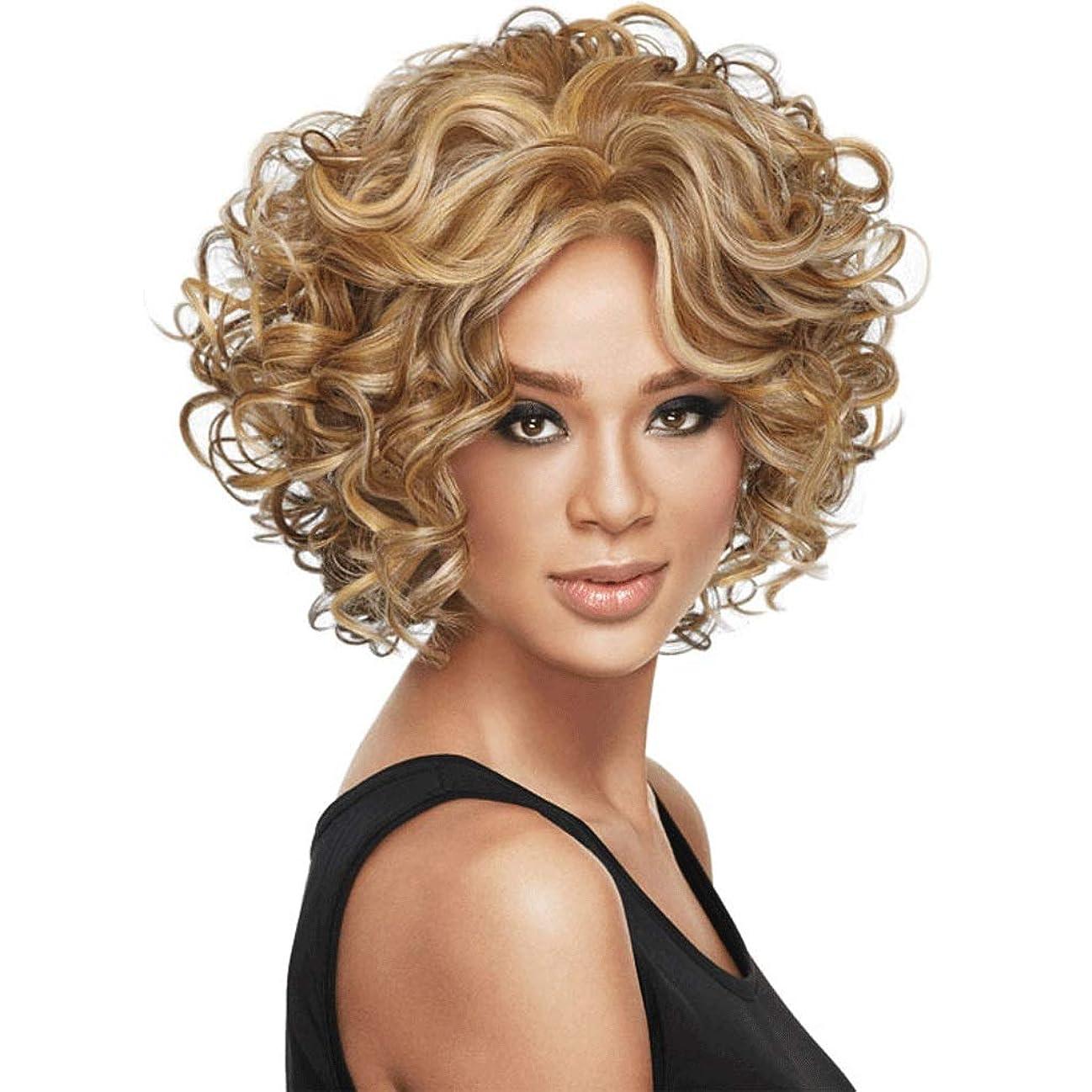びっくり高齢者心のこもった黒人女性のファッション短い巻き毛のかつら、レディースコスプレ/結婚式/パーティー/誕生日のための耐熱性人工毛 (色 : C)