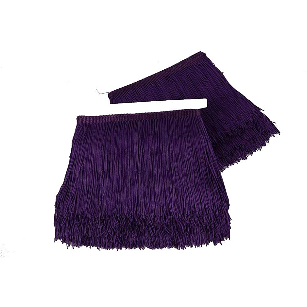 Heartwish268 Fringe Trim Lace Polyerter Fibre Tassel 6inch Wide 10 Yards Long for Clothes Accessories Latin Wedding Dress DIY Lamp Shade Decoration Black White Red(Purple)