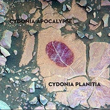 Cydonia Planitia