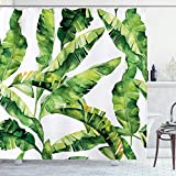 AMBZEK Tropical Palm Tree Shower Curtains Green Banana Leaves Plant Painting Summer Coconut Artwork Cloth Fabric Bathroom Decor Set with 12 Pack Plastic Hooks 71' W x 71' H, Green