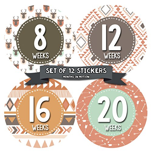 Months in Motion Pregnancy Weekly Belly Growth Stickers - Baby Bump Belly Stickers - Maternity Week Sticker - Pregnant Expecting Photo Prop Keepsake - Expectant Mom Gift - Style 916
