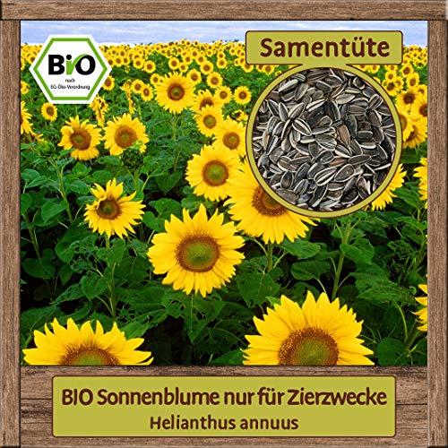 Samenliebe BIO Blumen-Samen samenfeste Pflanzen Saatgut für Balkon und Garten Set für Bienen-Wiese Bienen-Wiede, Sorte:BIO Sonnenblume nur für Zierzwecke