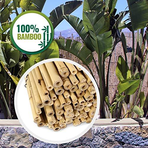 HAPPERS Valla jardín BAMBÚ Natural, Rollo cañas bambú ocultación jardín, terraza y balcón, o decoración terraza de 100cm x 200cm