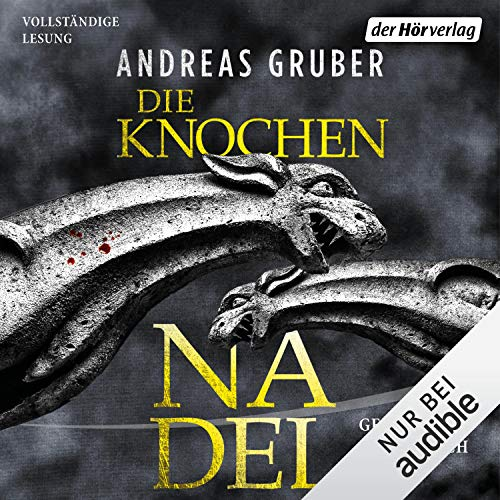 Die Knochennadel Audiobook By Andreas Gruber cover art