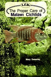 The Proper Care of Malawi Cichlids