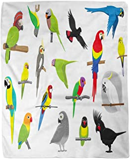 rouihot 60x80 Inches Flannel Throw Blanket Flying Various Parrots Cartoon Cockatoo Parakeet Macaw Bird Cockatiel Home Decorative Warm Cozy Soft Blanket for Couch Sofa Bed