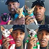 Cat Love - EP 2