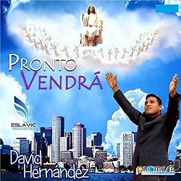 Pronto Vendra
