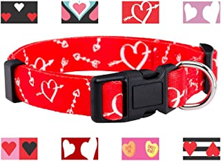 Best valentines day dog collars Reviews