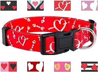 Native Pup Valentine's Day Heart Dog Collar
