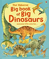 Big Book of Big Dinosaurs (Usborne Big Book Of...)
