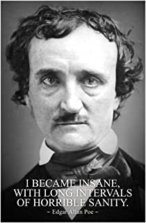 I Became Insane with Intervals of Horrible Sanity Edgar Allan Poe Laminated Dry Erase Sign Poster 24x36